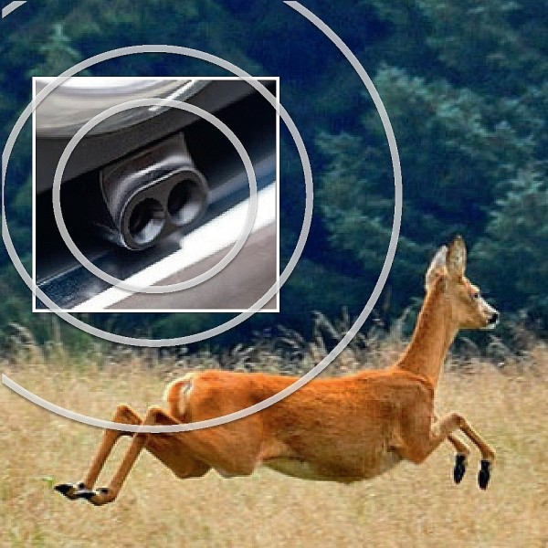 2 These Deer Whistles Will Help Save Animals from Getting Runover