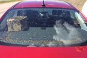 Bee car