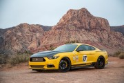 All-New Shelby Terlingua