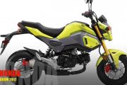 2017 Honda Grom Scrambler: Sportier Minibike, Provides Real Off-Roading Riding Performance