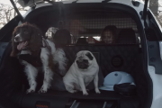 Nissan X-Trail 4Dogs concept: the 'pawfect' car for family adventures
