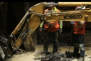 Subway Dig Reveals Ice Age Fossils