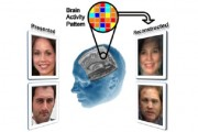 MRI Scans Can Show What Face You're Looking At