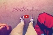 Google Glass Short Film Seeds