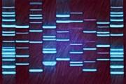 DNA Artwork